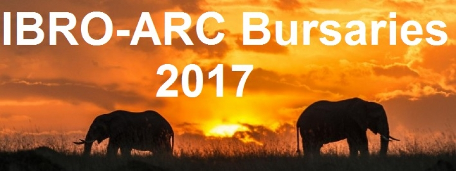 IBRO-ARC Bursaries 2017